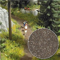 Forest Track & Field Path Scatter