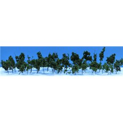 Dark Green Pack of 60 Trees