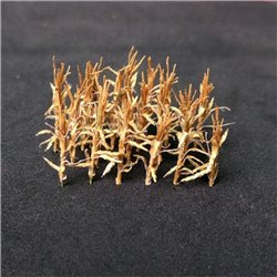 N Gauge Dried Corn Stalks (24)