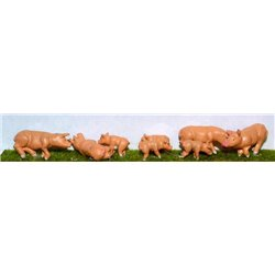 Assorted Pigs & Piglets (O scale 1/43rd) - Unpainted
