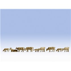 N Scale (1/148 - 1/160) Cows - Brown (9) by Noch