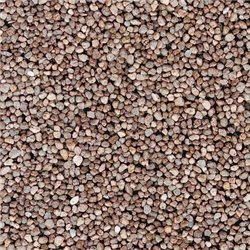 Light Brown Heavy Gravel