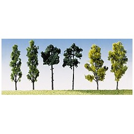 6 Assorted Trees