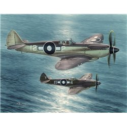 Supermarine Seafire F Mk.XV Far East Service