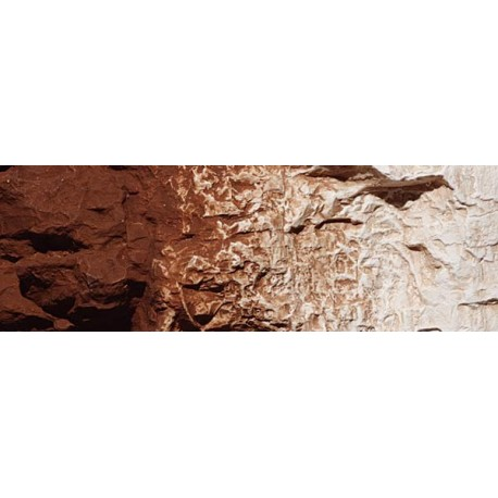 Terrain Paint - Burnt Umber - 4 fl oz