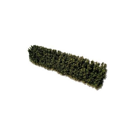 Woodland/garden hedges 155mm