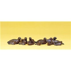 Circus Seals (12) Figure Set