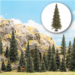 N/TT 20 Pine Trees With Bases