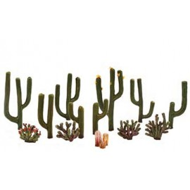 Cactus Plants - Pack of 13