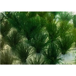 10mm Assorted Green Tufts (30 per pack)