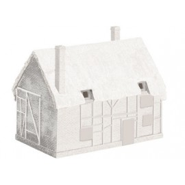 Derelict cottage (unpainted)