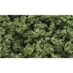 Light Green Clump Foliage