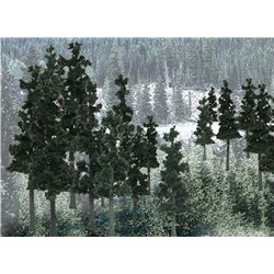 6-8in. Conifer Colors - Pack of 12