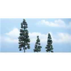 2.5-5 1/8in. Juniper - Pack of 3