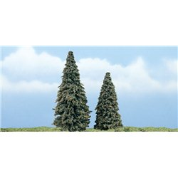 3in.-4in. Conifer - Pack of 2